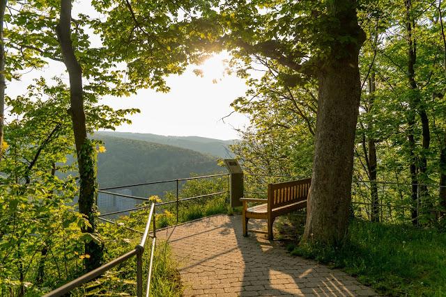 Sonnenuntergang am kleinen Burgberg  Wandern in Bad Harzburg  Wanderung Harz  Kurpark und Burgberg Bad Harzburg 08