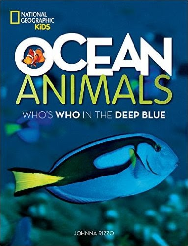 A year of jubilee reviews dive into summer from national for Jubilee deep sea fishing