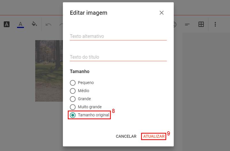 """Imagem mostrando as opções de edição de imagem, destacado por um retângulo vermelho as opções """"Tamanho original"""" e Atualizar"""