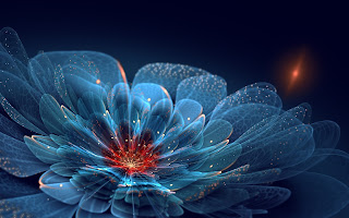 Awesome-fractals-of-flower-lively-looking-design-pattern-image.jpg