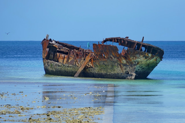 Heron Island Schiff Wrack Shipwreck Insel Wrack Schiff Schiffswrack Meer gestrandet aufgelaufen