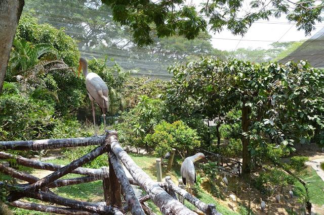 Bird Park