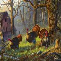 FunEscapeGames-Wild Turkey Escape