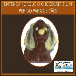 Entenda porque chocolate é um perigo para os cães