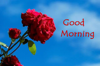 good morning hd images download