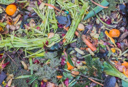 cara membuat pupuk bokashi cair dari limbah dapur skala rumah tangga