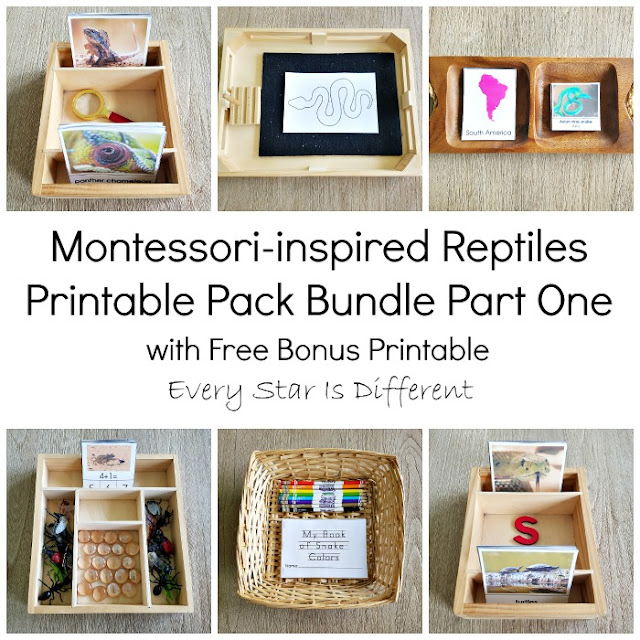 Montessori-inspired Reptiles Printable Pack Bundle Part One