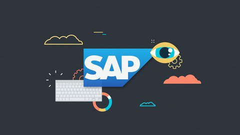 SAP Business Analytics Essential Training [Free Online Course] - TechCracked