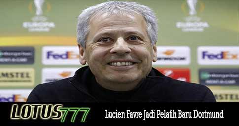 Lucien Favre Jadi Pelatih Baru Dortmund