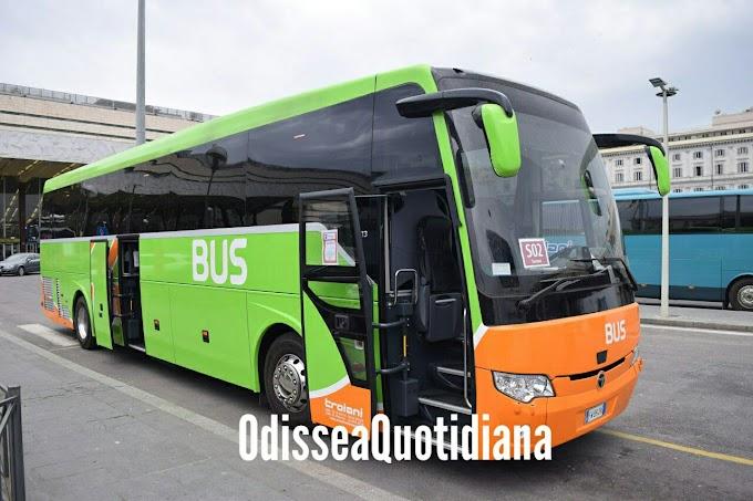 Linee di bus S, dal 20 maggio attive anche da Ostia - Acilia e piazza Venezia