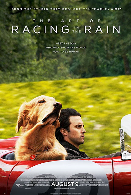 Sinopsis Film The Art of Racing in the Rain (2019)