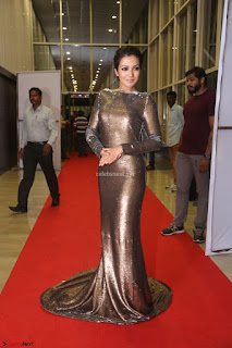 Actress Catherine Tresa in Golden Skin Tight Backless Gown at Gautam Nanda music launchi ~ Exclusive Celebrities Galleries 114.JPG
