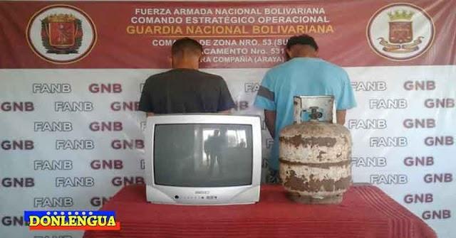 PELIGROSOS Y SALVAJES detenidos por robarse una TV y una bombona oxidada