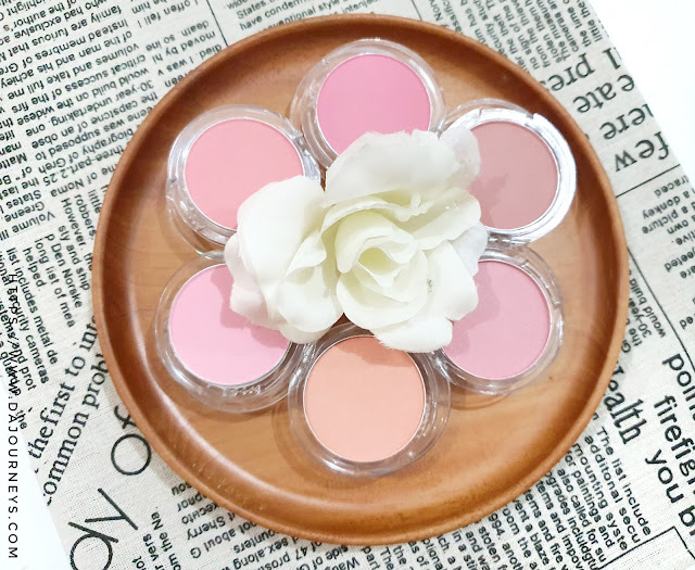 Review Fanbo Precious White Blooming Cheek