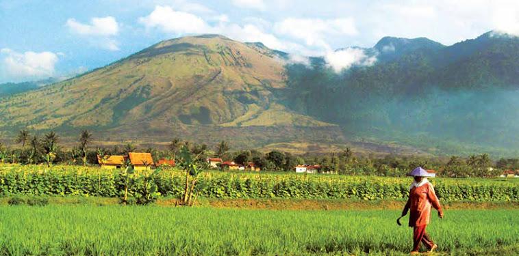 Mengenal Gunung Guntur Garut Jawa Barat
