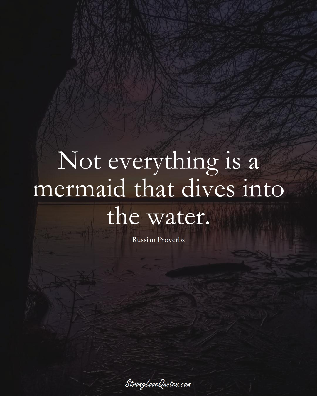 Not everything is a mermaid that dives into the water. (Russian Sayings);  #AsianSayings