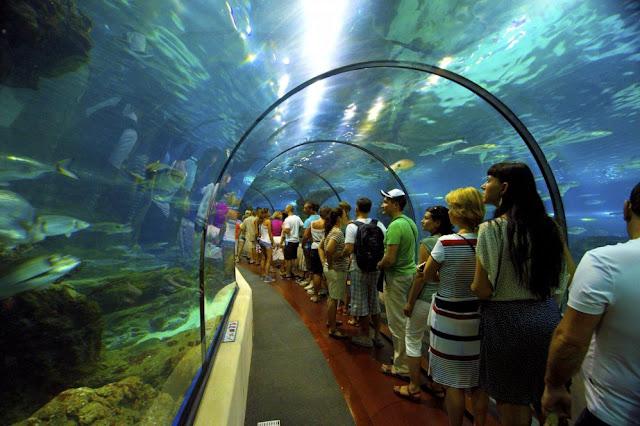 Tunel Aquario Barcelona