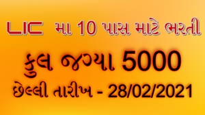 LIC 5000 Assistant Posts Online Form 2020-21 Apply Online