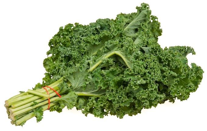 Adelgazar comiendo kale, una verdura de hoja verde