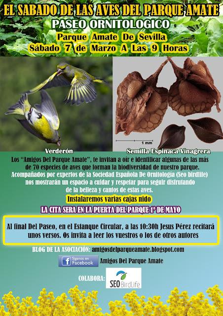 Paseo Ornitológico Parque Amate, Sábado 7 de Marzo 2020. Grupo Local SEO-Sevilla.