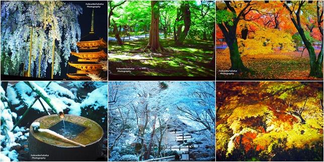 The Enchanting Four Seasons Of Beautiful Japan