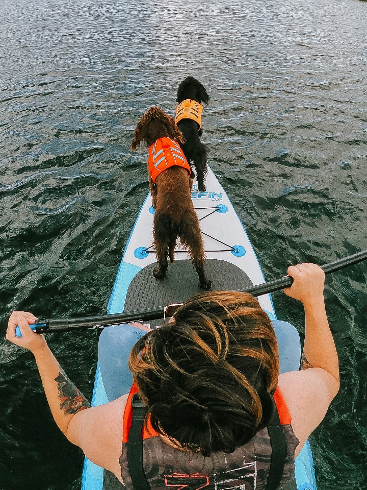 2021 Bucket List with Dogs
