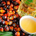 EPIC RESEARCH NCDEX CRUDE PALM OIL  UPDATE OF 19 JANUARY 2017