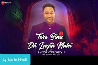Tere Bina Dil Lagta Nahi Lyrics in Hindi | Lakhwinder Wadali