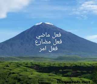 pengertian dan macam macam fi'il dalam bahasa arab