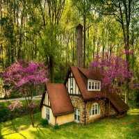 FunEscapeGames-Forest Cottage Fun Escape