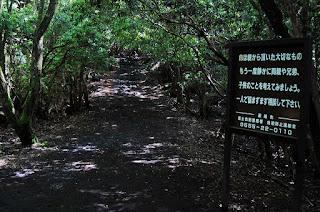 Photo d'un panneau balisant le chemin de randonnée de la forêt d'Aokigahara