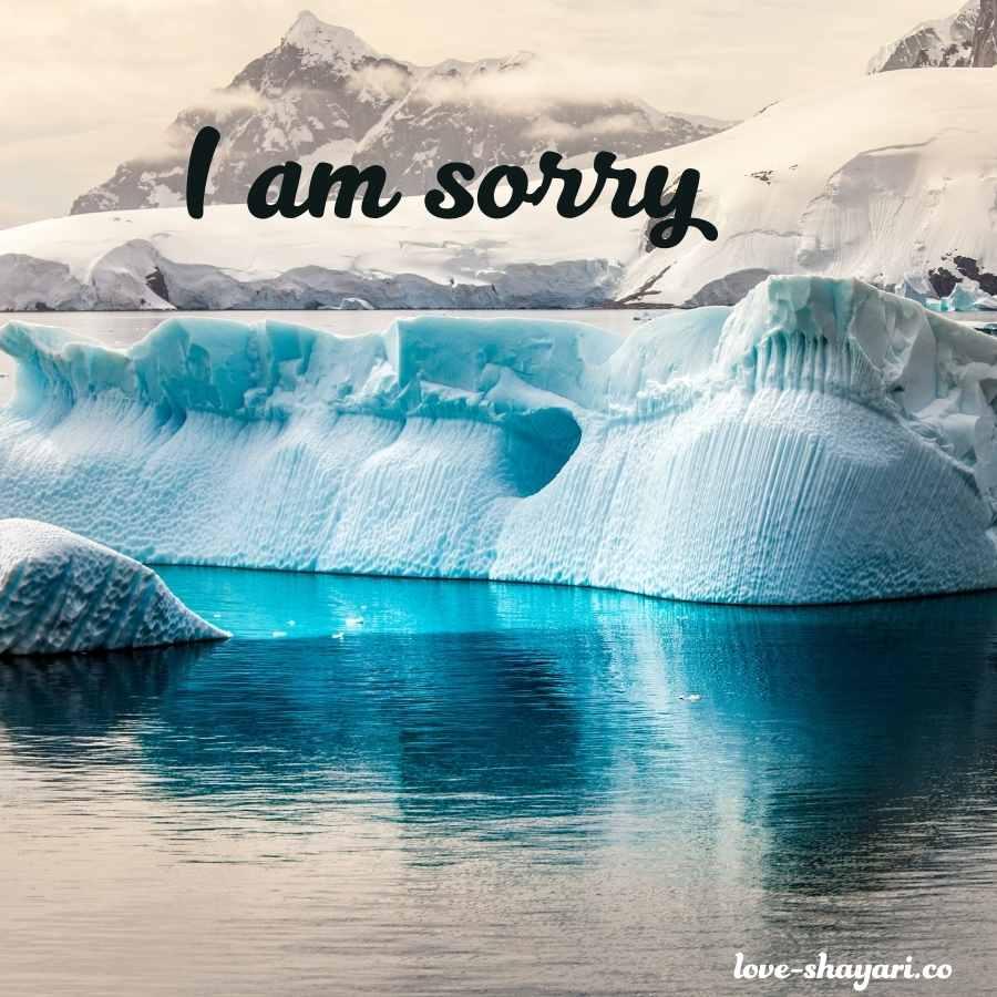 i am sorry photo