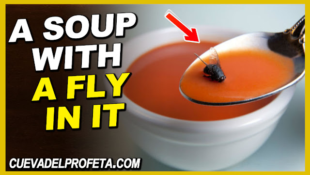 A soup with a fly in it - William Marrion Branham Quotes