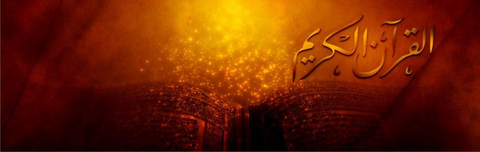 desain foto amp desain gambar 2011