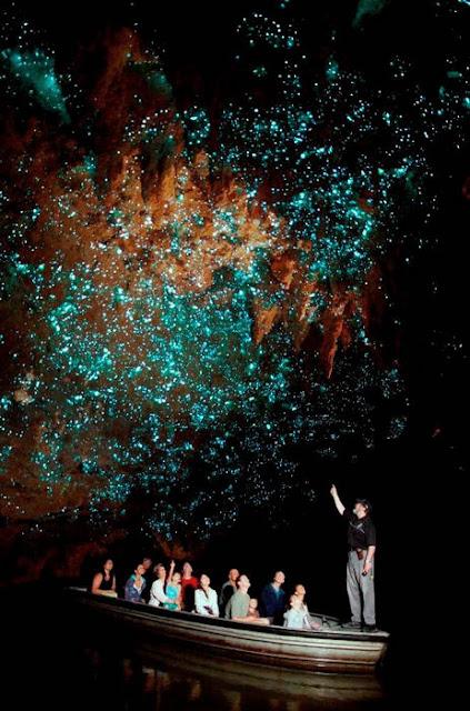 Cavernas Brilhantes de Waitomo, Nova Zelândia