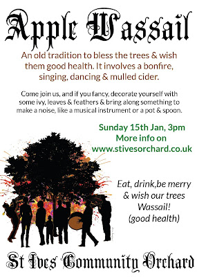 Apple Wassail - St Ives Community Orchard.