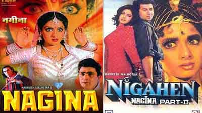 nagina unknown facts in hindi