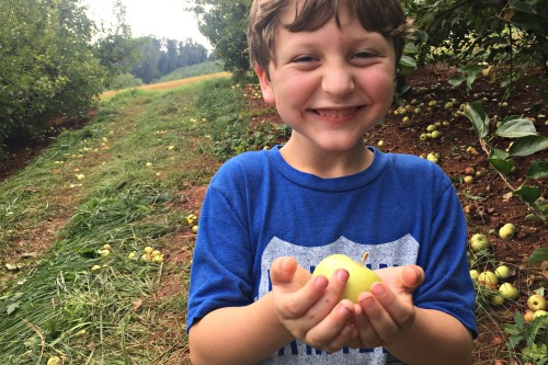 Ary You a Homeschooling Agritrouist? #homeschooling #fieldtrip #roadschooling