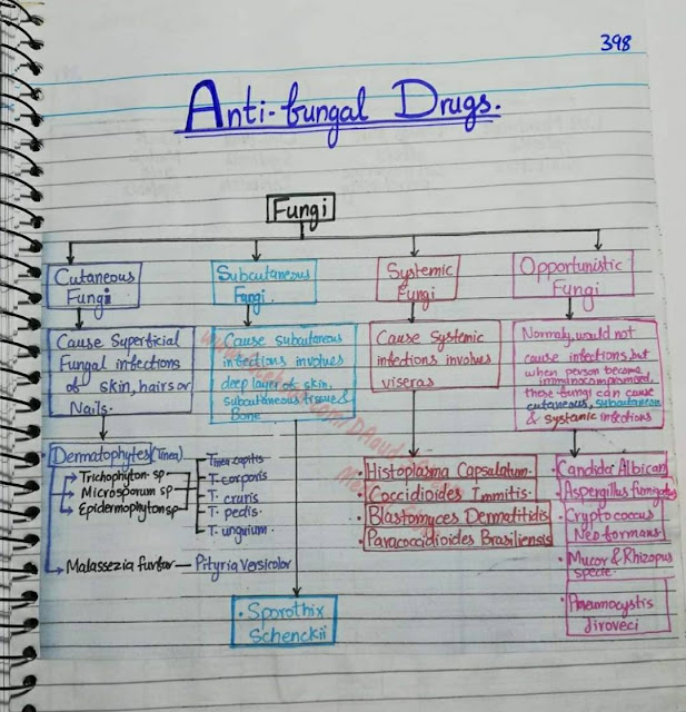 drugs antifungal