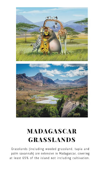 Madagascar Franchise (1: 2005, 2: 2008, 3: 2012) Where: 1: Madagascar, 2: Somewhere in African Mainland, 3: Rome and London, Europe