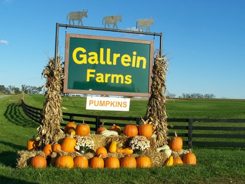 Review: Gallrein Farms (by Ash)