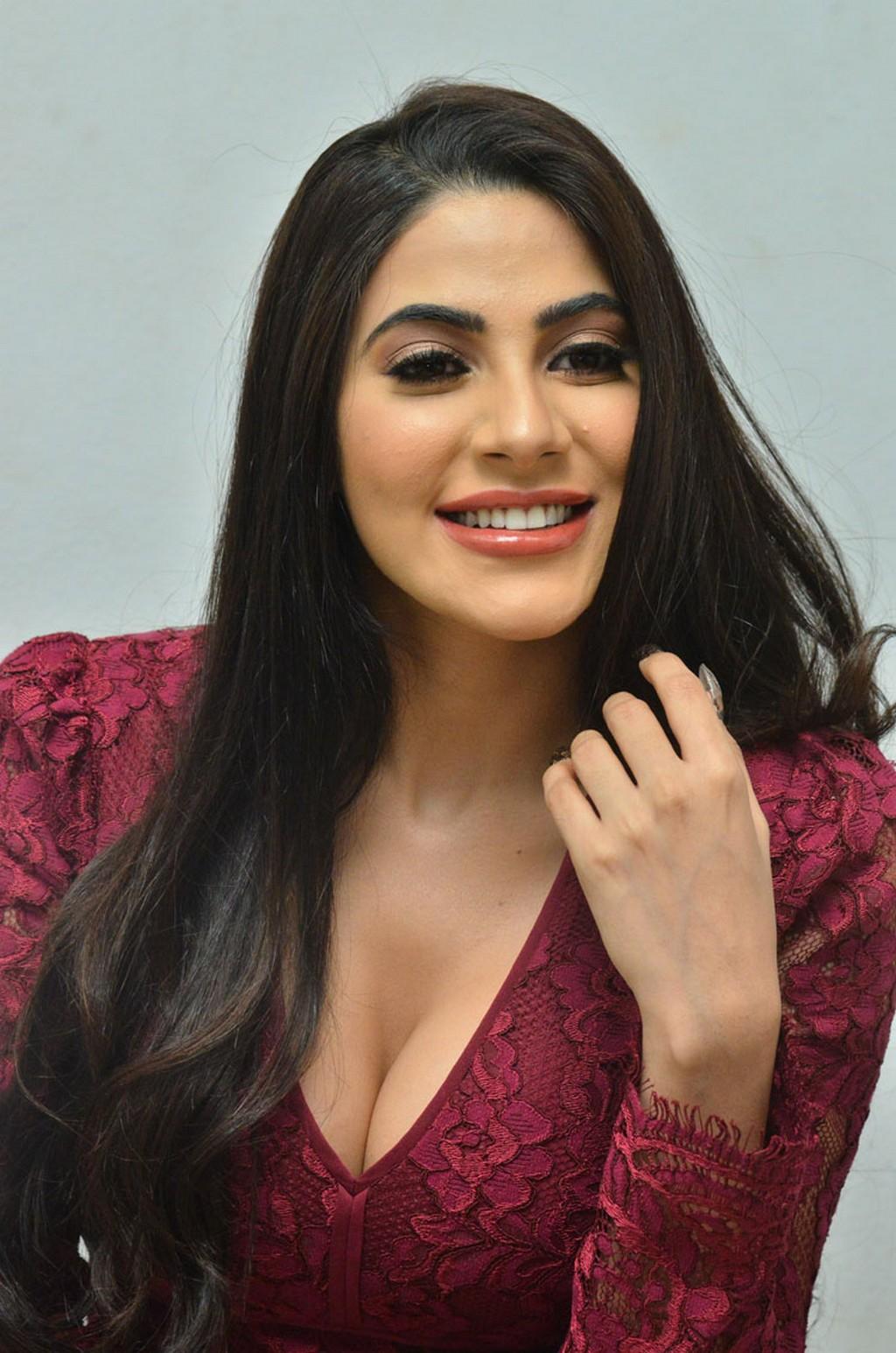 NIkki Tamboli sizzling Pics in Deep neck Maroon Gown at Chikati Gadhilo Chithakottudu movie Success Meet