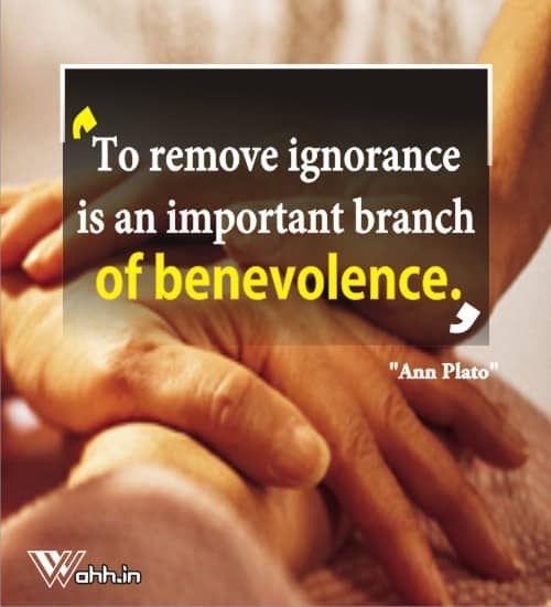 Ann-Plato-ignorance-quotes