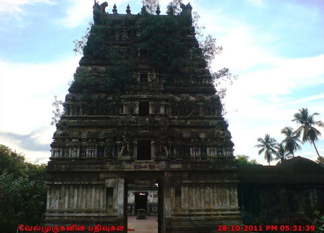 Thiruvila nagar Shiva Temple