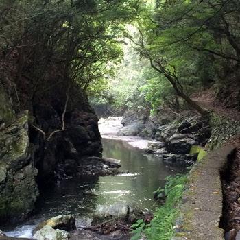 京都トレイル西山コース
