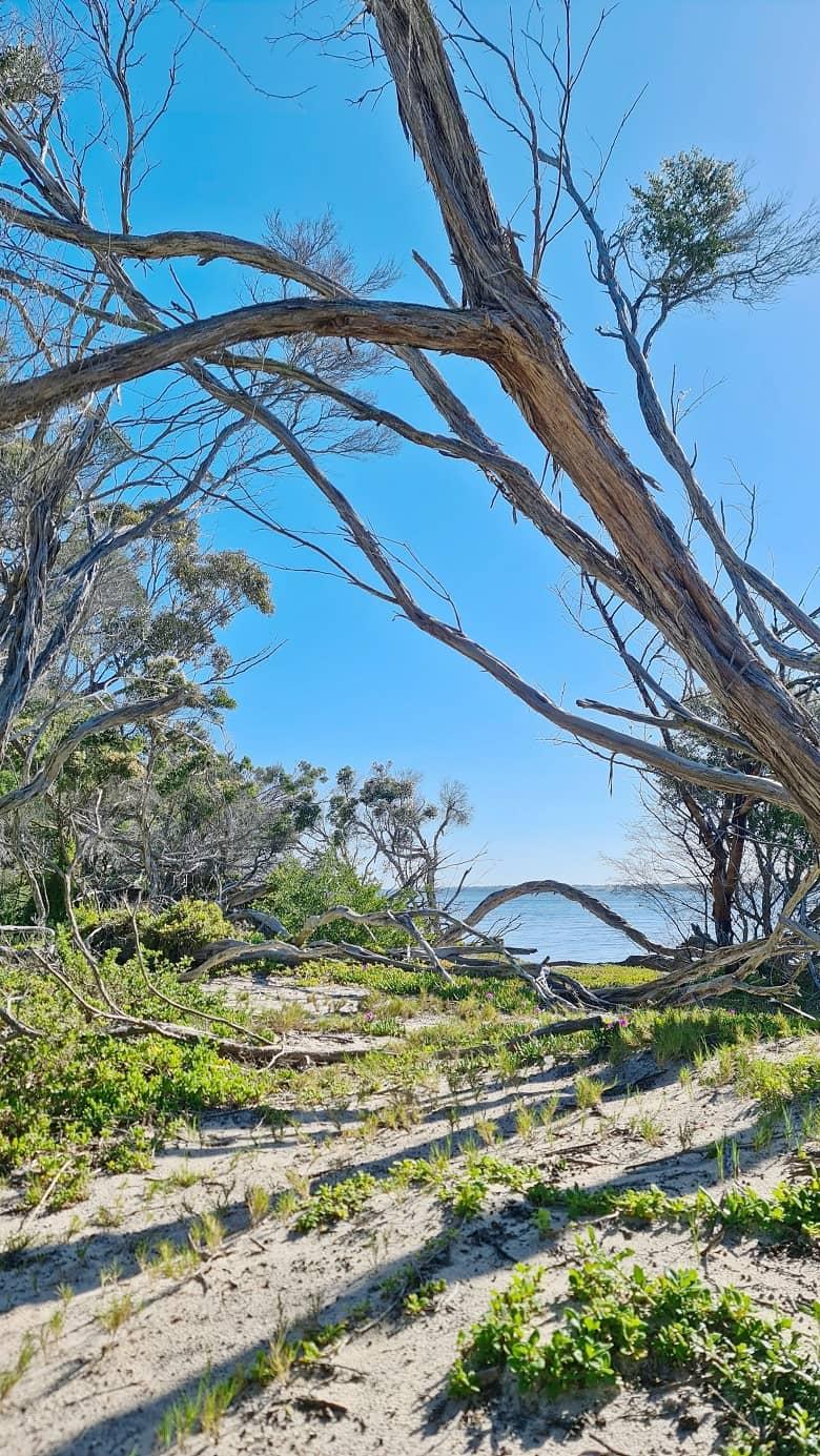 Loch Sport, Victoria Australia