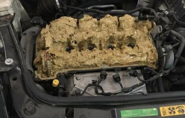 Wanita Masukkan Cecair Pencuci Ke Dalam Enjin