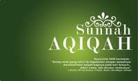 https://ashakimppa.blogspot.com/2013/03/download-ebook-panduan-praktis-aqiqah.html