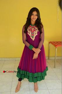 Actress Pooja Jhaveri Latest Stills in Purple Salwar Kameezt at Dwaraka Success Meet  0243.JPG