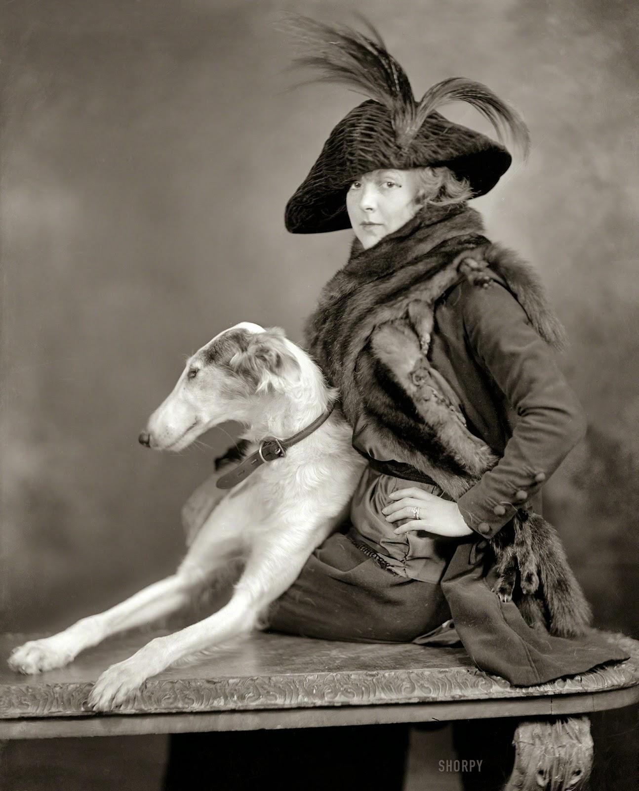 старинные картинки собак рассказ про